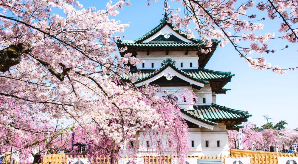 弘前城と桜の風景